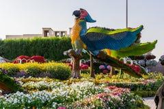 迪拜,阿拉伯联合酋长国2017年11月17日-奇迹庭院在迪拜阿拉伯联合酋长国 免版税图库摄影