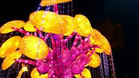 迪拜,阿联酋,阿拉伯联合酋长国- 2017年11月20日:迪拜庭院在晚上被照亮的焕发公园 股票视频