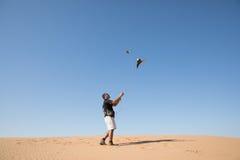 迪拜,阿联酋- 2016年12月2日 在猎鹰训练术训练期间的一只猎鹰在捉住诱剂的沙漠 免版税图库摄影