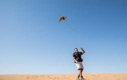 迪拜,阿联酋- 2016年12月2日 在猎鹰训练术训练期间的一只猎鹰在捉住诱剂的沙漠 免版税库存图片