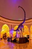迪拜购物中心在WorldUAE的最大的商城 库存图片