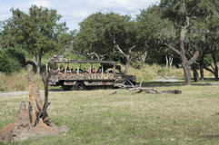 迪斯尼世界乞力马扎罗徒步旅行队动物Kindom 免版税库存照片