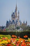 迪斯尼乐园城堡 免版税库存照片