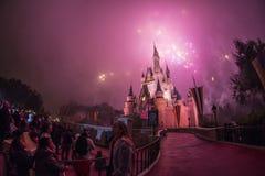 迪斯尼城堡华特・迪士尼世界- Orlando/FL 库存图片