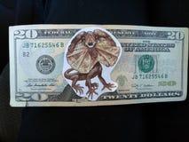 迪诺金钱 免版税库存照片