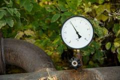 迫使传感器热水反对叶子户外 库存图片