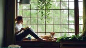 迷人的女学生非裔美国人的女孩是阅读书坐窗台在说谎在她旁边的可爱的爱犬附近 股票录像