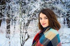 迷人的女孩冬天画象  免版税库存照片