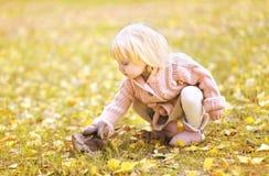 迷人的孩子在秋天 免版税库存图片