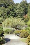 迷人的日本庭院 免版税库存照片