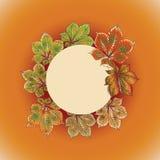 迷人的秋天 栗子的叶子花圈  免版税库存照片