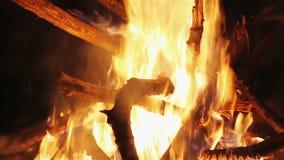 迷人的篝火火焰,垂直的摇摄照相机行动 影视素材