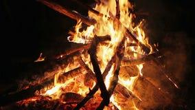 迷人的篝火火焰,垂直的摇摄照相机行动 股票视频