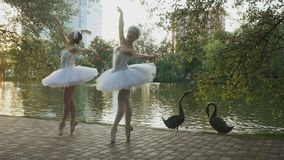 迷人的芭蕾舞女演员在公园跳舞在湖附近 股票视频