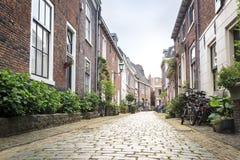 迷人的街道在哈莱姆,荷兰 免版税库存照片