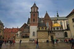迷人的Wawel在玫瑰色开花的克拉科夫 库存照片