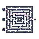 迷宫比赛 三个入口、一出口和一种正确的方式去 但是锁死的许多道路 也corel凹道例证向量 皇族释放例证