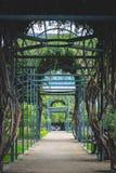 迷宫道路在公园 免版税库存照片