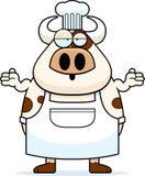 迷茫的动画片母牛厨师 免版税库存图片