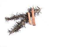 迷迭香和两根肉桂条小树枝  免版税库存图片
