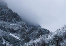 迷雾山脉在冬天 库存图片