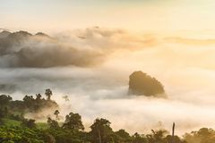 迷雾山脉风景在日出的在Phayao省, 免版税库存照片