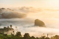 迷雾山脉风景在日出的在Phayao省, 库存图片