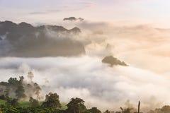 迷雾山脉风景在日出的在Phayao省, 免版税库存图片