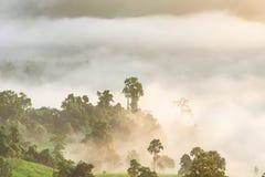 迷雾山脉风景在日出的在Phayao省, 库存照片
