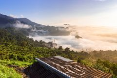 迷雾山脉风景在日出的在Phayao省, 免版税图库摄影