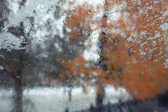 迷离秋天树叶子 库存照片