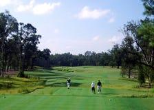 追猎风景的高尔夫球 库存图片