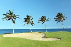 追猎高尔夫球夏威夷 库存照片