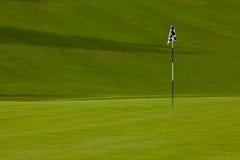 追猎高尔夫球绿色 免版税库存照片