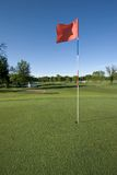 追猎高尔夫球 免版税库存图片