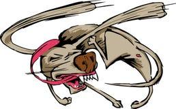追逐他的尾巴的狗 免版税库存图片