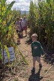 退出玉米迷宫的家庭 免版税图库摄影