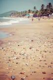 退出Anjuna使低潮的全景靠岸与白色湿沙子和绿色可可椰子,果阿,印度 库存图片