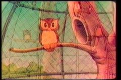 退色在笼中的猫头鹰 向量例证