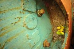 退色的绿松石 库存照片