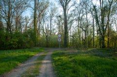 适于步行的道路的末端 库存照片