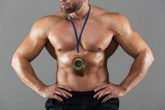 适合坚强的赤裸上身的男性爱好健美者的播种的图象 库存图片