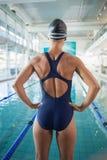 适合游泳者背面图由水池有空的中心的 库存图片