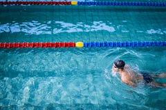 适合的人游泳 免版税图库摄影