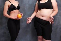 适合的妇女用葡萄柚和饿的超重夫人 另一个 库存照片