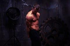 适合肌肉运动员Silhoette射击有光秃的躯干的 库存图片