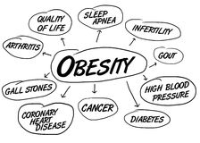 适应健康肥胖病 库存例证