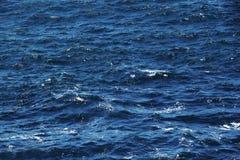 适度地风大浪急的海面,深刻的蓝色颜色 免版税库存图片