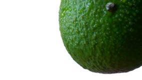 逆时针转动在白色背景的绿色鲕梨的特写镜头例证 股票视频