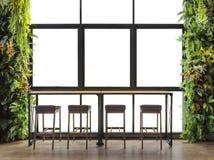 逆酒吧有与装饰灌木的窗口视图,隔绝在白色背景 库存图片